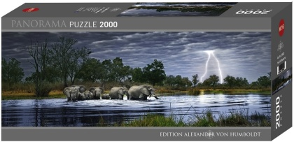 Alexander von Humboldt: Herd of Elephants - 2000 Teile Puzzle