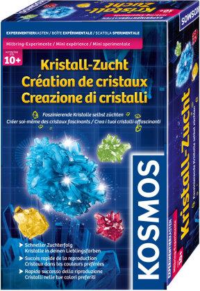 Mitbring-Experimente - Kristall-Zucht
