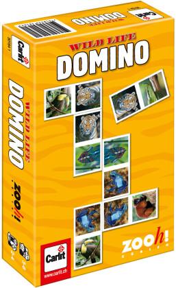 Wild Life Domino