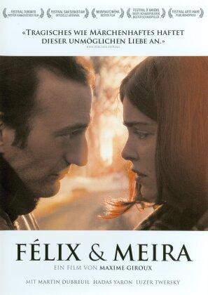 Félix & Meira (2014)