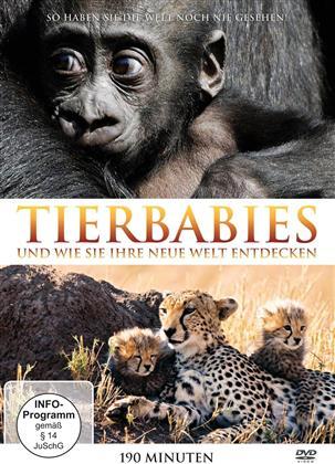 Tierbabies - und wie sie ihre neue Welt entdecken