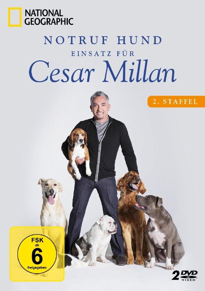 Notruf Hund - Einsatz für Cesar Millan - Staffel 2 (National Geographic, 2 DVDs)