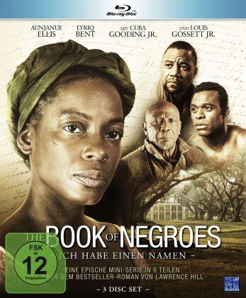 The Book of Negroes - Ich habe einen Namen (3 Blu-rays)