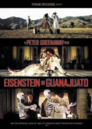 Eisenstein In Guanajuato (2015) (Widescreen)