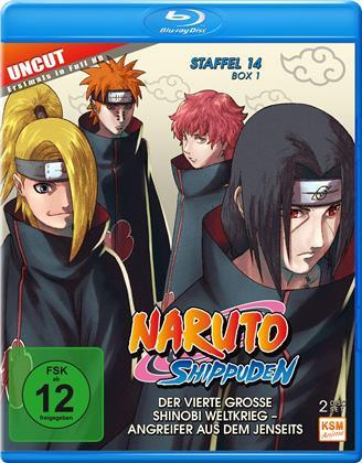 Naruto Shippuden - Staffel 14 Box 1 (Uncut, 2 Blu-rays)