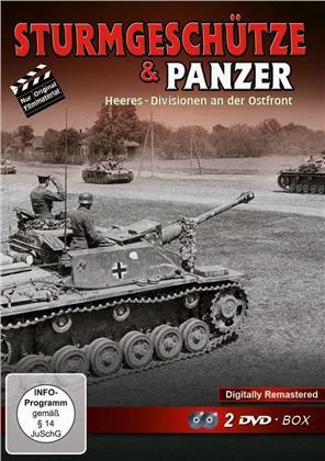 Sturmgeschütze & Panzer - Heeres-Divisionen an der Ostfront (Remastered, 2 DVDs)