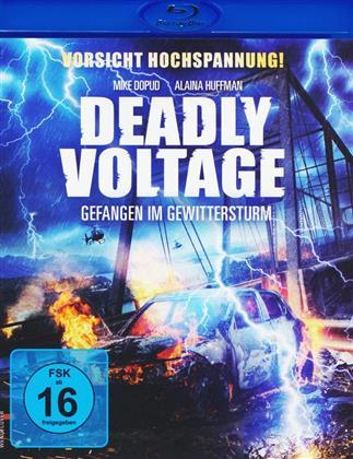 Deadly Voltage - Gefangen im Gewittersturm (2016)