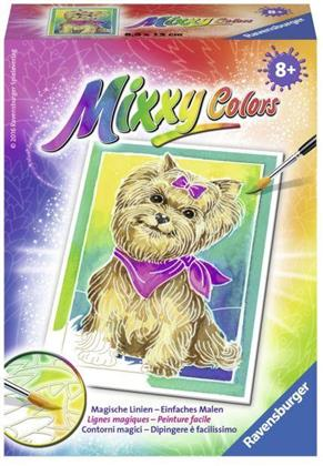 Mixxy Colors - Yorkshire Terrier