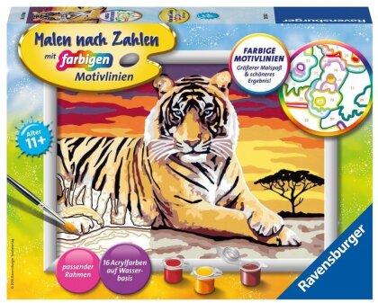 Malen nach Zahlen - Majestätischer Tiger