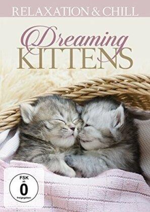 Dreaming Kittens