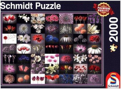 Blumengruss - 2000 Teile Puzzle