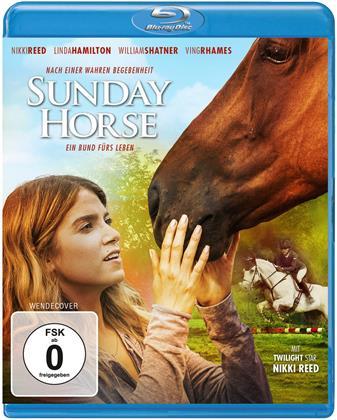 Sunday Horse (2015)