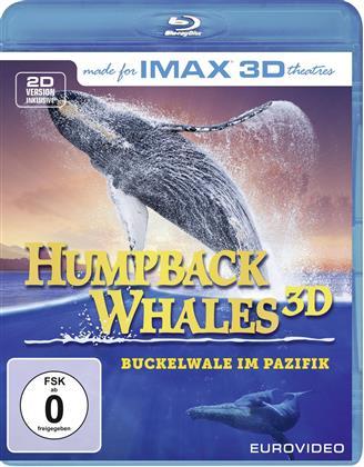 Humpback Whales (Imax)