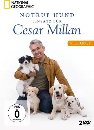 Notruf Hund - Einsatz für Cesar Millan - Staffel 3 (National Geographic, 2 DVDs)