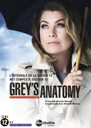 Grey's Anatomy - Saison 12 (6 DVDs)