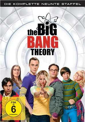 The Big Bang Theory - Staffel 9 (3 DVDs)