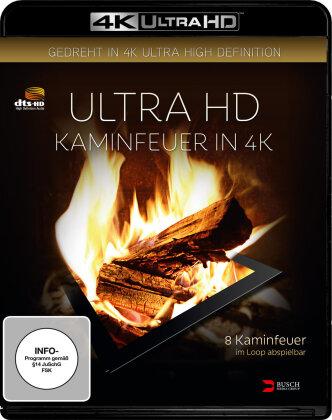 Ultra HD Kaminfeuer (2016)