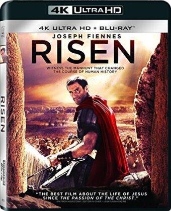 Risen (2016) (4K Ultra HD + Blu-ray)
