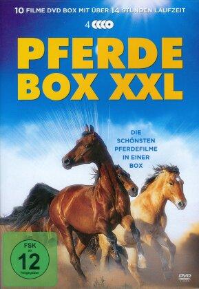 Pferdebox XXL - 10 Spielfilme Box (4 DVDs)