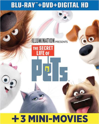 The Secret Life of Pets (2016) (including 3 Mini Movies, Blu-ray + DVD)