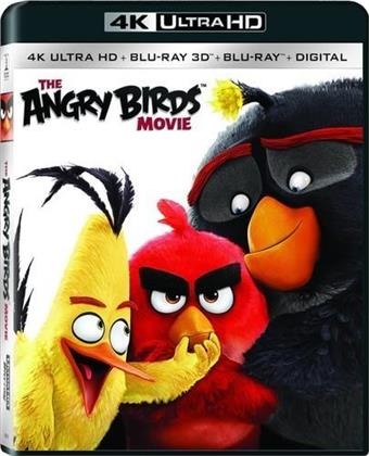 Angry Birds - The Movie (2016) (4K Ultra HD + Blu-ray + Blu-ray 3D)
