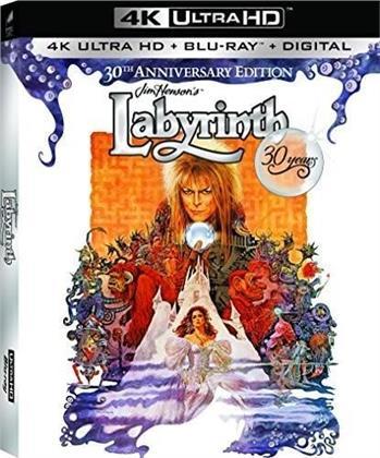 Labyrinth (1986) (30th Anniversary Edition, 4K Ultra HD + Blu-ray)