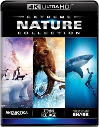 Extreme Nature Collection - Antarctica on the Edge / Titans of the Ice Age / Great White Shark (4K Mastered, Imax)