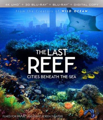 The Last Reef - Cities Beneath The Sea (4K Mastered, Imax, 4K Ultra HD + Blu-ray 3D + Blu-ray)