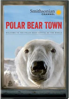 Polar Bear Town - Season 1 (2 DVDs)