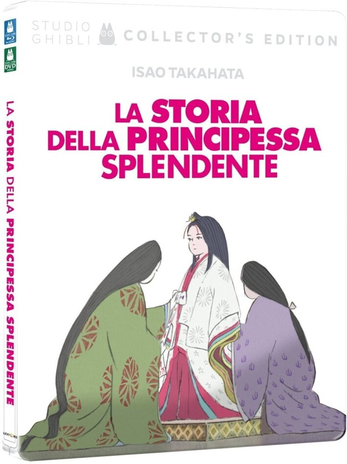 La storia della principessa splendente (2013) (Collector's Edition, Steelbook, Blu-ray + DVD)
