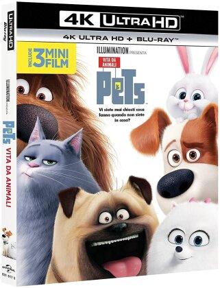 Pets - Vita da animali (2016) (4K Ultra HD + Blu-ray)
