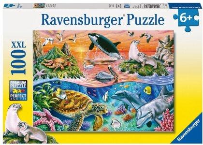 Bunter Ozean - Puzzle
