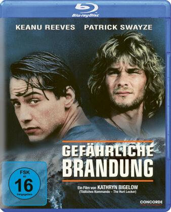 Gefährliche Brandung (1991)