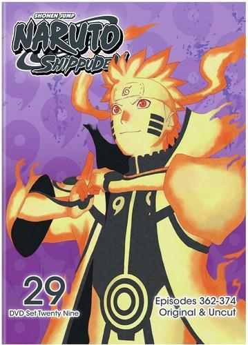 Naruto Shippuden - Set 29 (Uncut, 2 DVDs)
