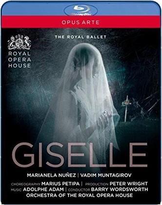 Royal Ballet, Orchestra of the Royal Opera House, … - Adam - Giselle (Opus Arte)