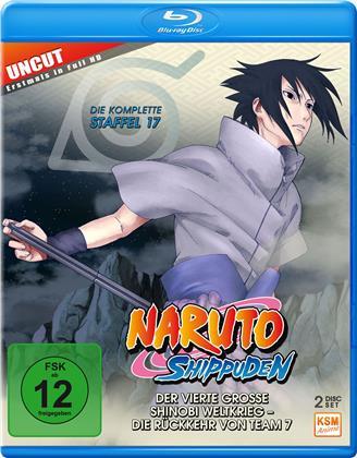 Naruto Shippuden - Staffel 17 (Uncut, 2 Blu-rays)