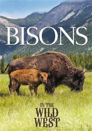 Bisons in the Wild West