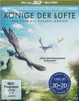 Könige der Lüfte - Wie Tiere das Fliegen lernten - David Attenborough (Blu-ray 3D + Blu-ray)