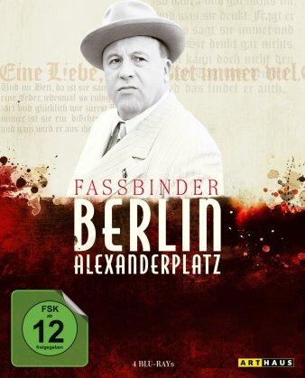 Berlin Alexanderplatz (Arthaus, 4 Blu-rays)