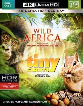 Wild Africa / Tiny Giants (BBC Earth, 4K Ultra HD + Blu-ray)