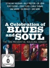 Various Artist - A Celebration of Blues and Soul