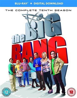 Big Bang Theory - Season 10 (2 Blu-rays)