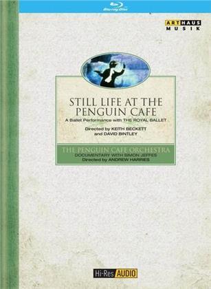 Still Life at the Penguin Cafe