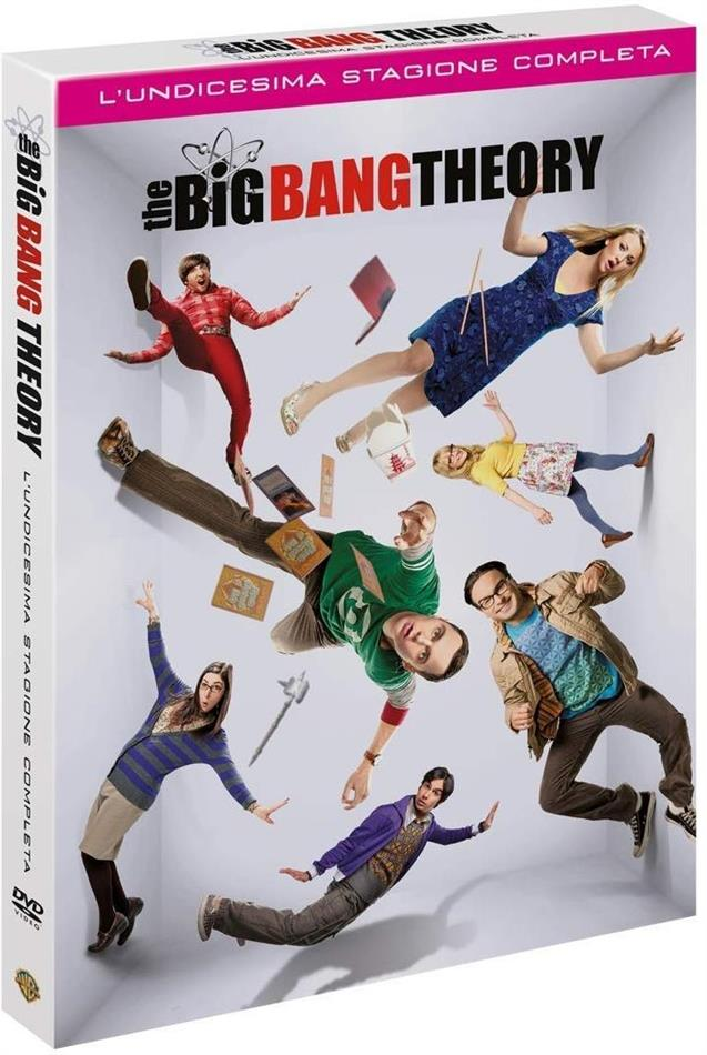 The Big Bang Theory - Stagione 11 (2 DVDs)
