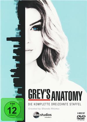 Grey's Anatomy - Staffel 13 (6 DVDs)