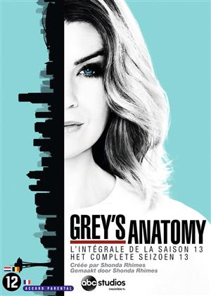 Grey's Anatomy - Saison 13 (6 DVDs)