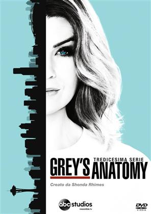 Grey's Anatomy - Stagione 13 (6 DVDs)