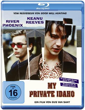 My private Idaho (1991)