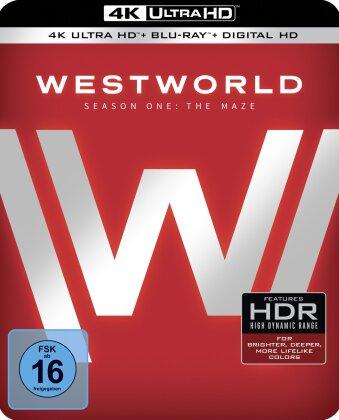 Westworld - Staffel 1 - Das Labyrinth (Metalbox, Sammler Edition, Limited Edition, 3 4K Ultra HDs + 3 Blu-rays)