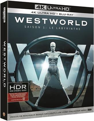 Westworld - Saison 1 - Le Labyrinthe (3 4K Ultra HDs + 3 Blu-rays)
